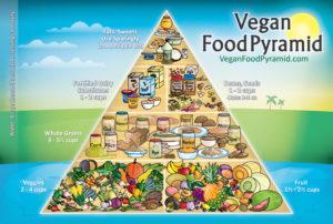 vegan diet health benefits, focus on health