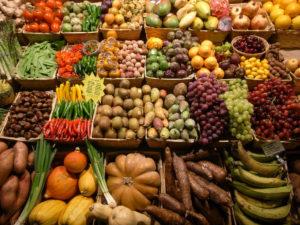 vegan diet for multiple sclerosis