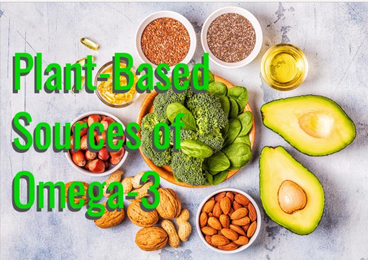 plant based sources of omega 3 | plant sources of omega 3