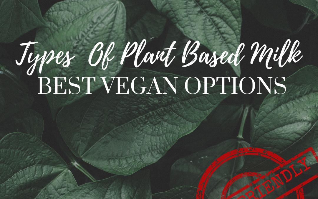 Types of Plant-Based Milk; Vegan Friendly!